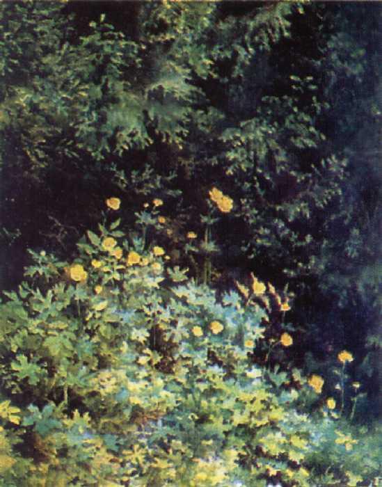 Е.Д Поленова. У опушки леса. Купальницы. 1885 г.